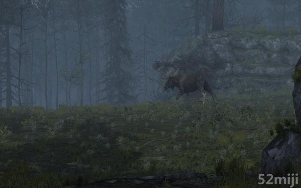 坎贝拉危险狩猎2013截图