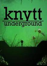 尼特的故事:地下探险