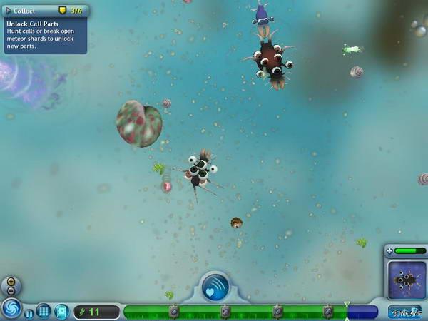 《攻略》我爱秘籍详细孢子(图)-细胞攻略冬季梵净山一日游阶段图片